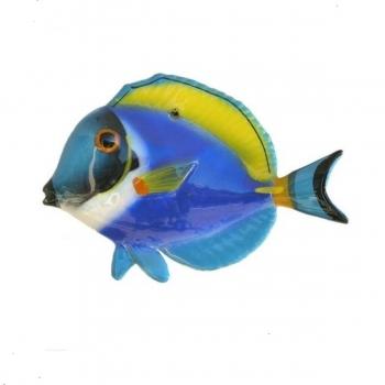 Pesce Chirurgo Ceramica cm 10